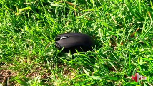 video review ratón razer orochi