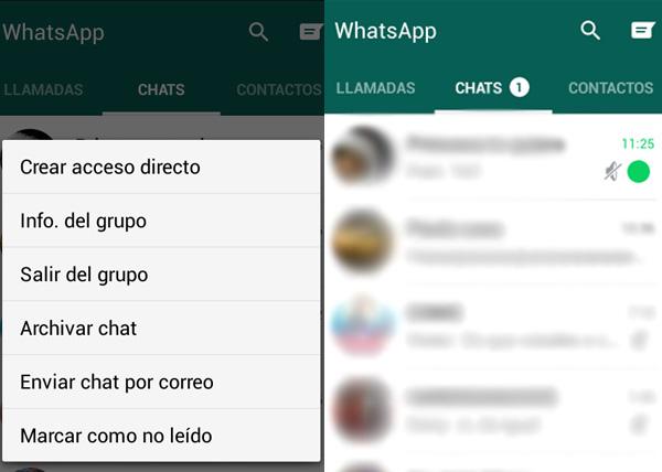 whatsapp leida 1