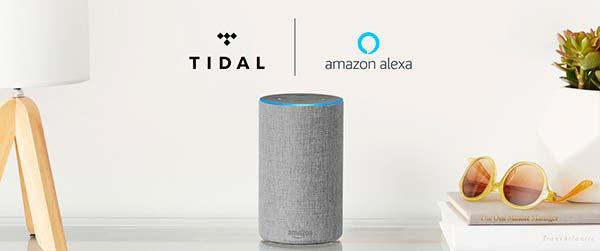 tidal Amazon Echo