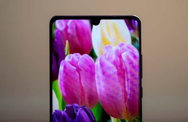 notch visible Huawei P30