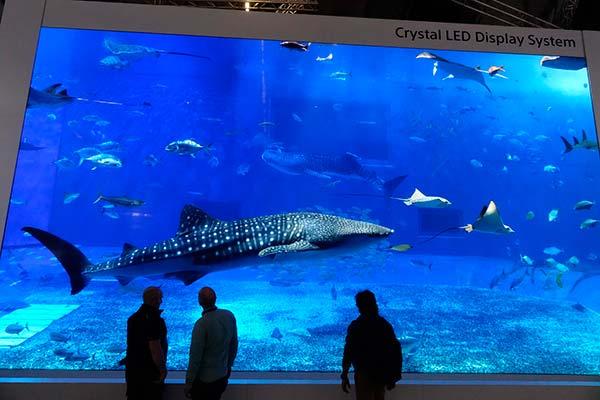 La enorme pantalla Crystal LED Sony de 440 pulgadas y 8K