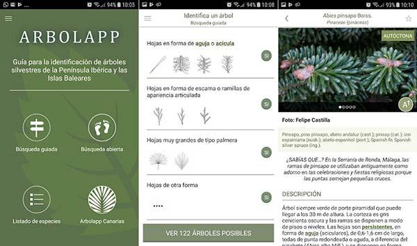 Arbolapp app identificar arboles
