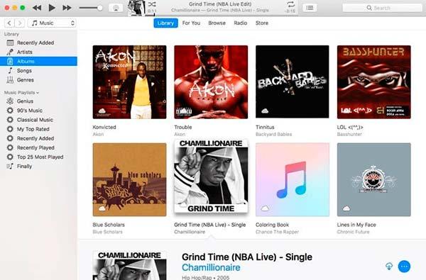 diseño interfaz Apple Music Bibliotecas