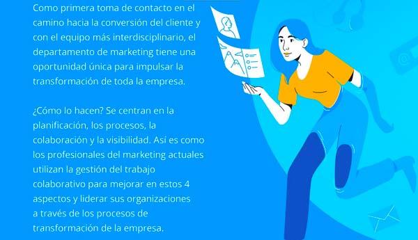 profesionales de marketing