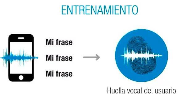 biometria de voz proceso entrenamiento